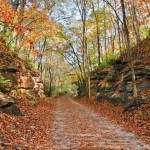 MKT Autumn Trail