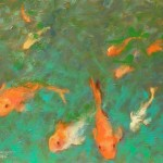 Swimming with the Fishes by Carole Katchen